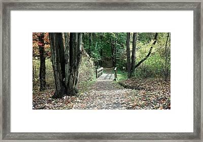 Autumn Bridge Framed Print by Jenny DiNuoscio