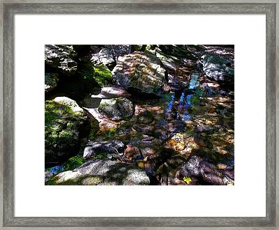 Autumn Brook 88 Framed Print