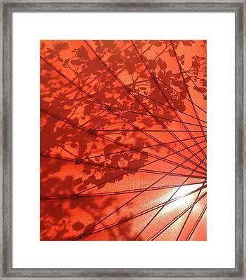 Autumn Butterfly Framed Print by Brenda Pressnall