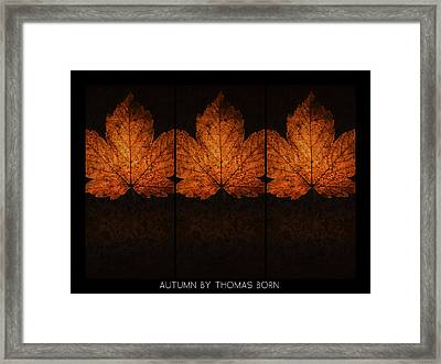 Autumn By Thomas Born Framed Print