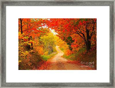 Framed Print featuring the photograph Autumn Cameo Road by Terri Gostola