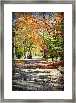 Autumn Canopy Framed Print