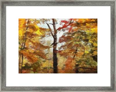 Autumn Canvas Framed Print by Dan Sproul