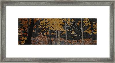 Autumn Carpet Framed Print by Anita Jacques
