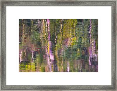 Autumn Carpet Framed Print