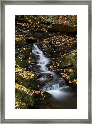 Autumn Cascade At Chesterfield Gorge - New Hampshire Framed Print