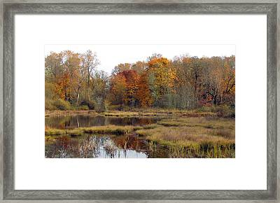 Autumn Changes  Framed Print by I'ina Van Lawick