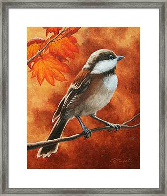 Autumn Chickadee Framed Print by Crista Forest