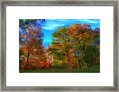 Autumn Clearing Framed Print
