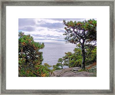Framed Print featuring the photograph Autumn Coast by Gene Cyr