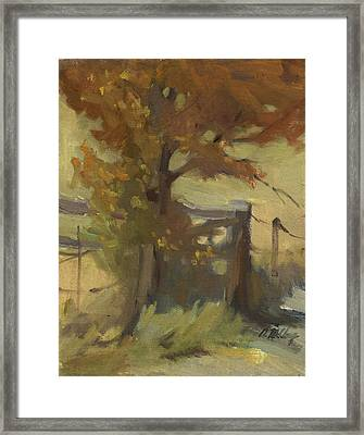 Autumn Color Framed Print by Diane McClary