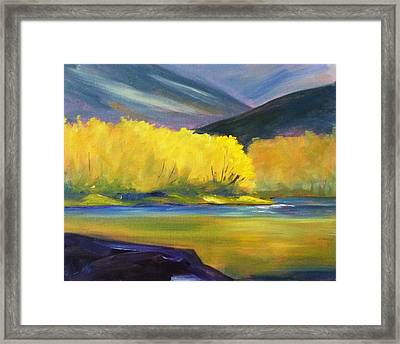 Autumn Color Framed Print by Nancy Merkle