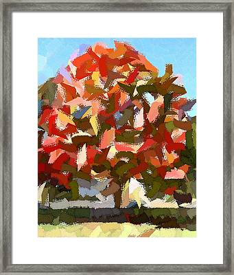 Autumn Color Riot Abstract Framed Print