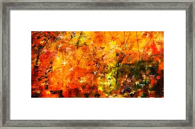 Aaron Berg Photography Framed Print featuring the photograph Autumn Colors by Aaron Berg