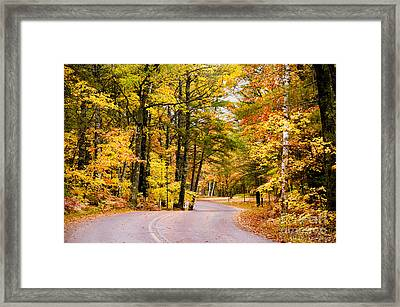 Autumn Colors - Colorful Fall Leaves Wisconsin - II Framed Print