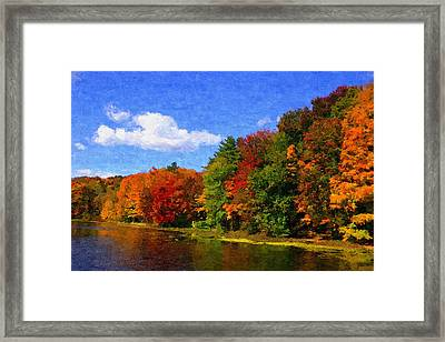 Autumn Colors Framed Print by Donna Lorello