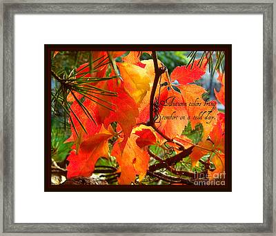 Framed Print featuring the photograph Autumn Colors by Heidi Manly
