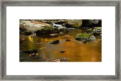 Autumn Colors On Little River Framed Print