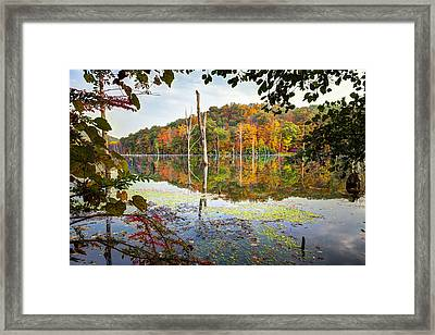 Autumn Colors Through The Trees On Monksville Reservoir - Long Pond Ironworks State Park Framed Print by Gary Heller