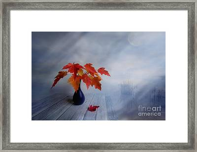 Autumn Colors Framed Print by Veikko Suikkanen