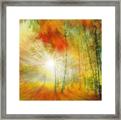Autumn Colours Framed Print by Igor Zenin