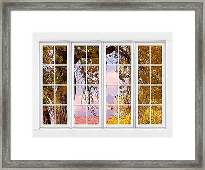 Autumn Cottonwood Tree Longs Peak White Window View Framed Print by James BO  Insogna
