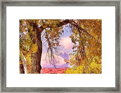 Autumn Cottonwood Twin Peaks View Framed Print
