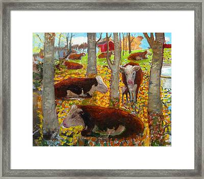 Autumn Cows Framed Print