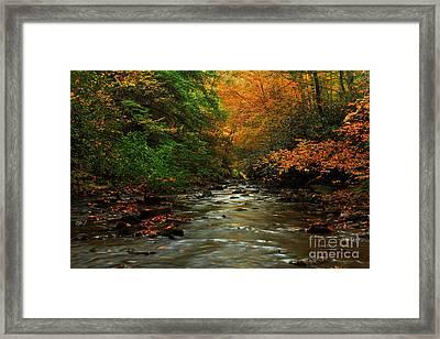 Autumn Creek Framed Print by Melissa Petrey