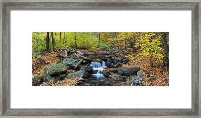 Autumn Creek Panorama With Yellow Maple Trees Framed Print