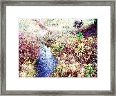 Framed Print featuring the photograph Autumn Creek by Vanessa Palomino