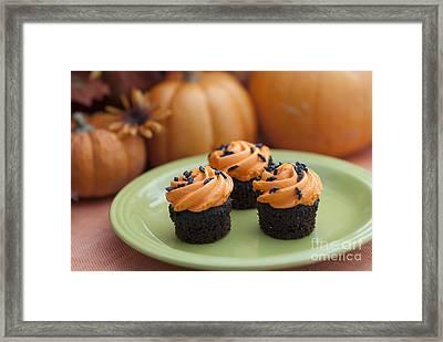 Autumn Cupcakes Framed Print by Juli Scalzi