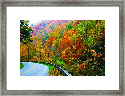 Autumn Curve Framed Print by  Vince Maggio