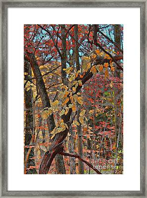 Autumn Day Framed Print by Jeff Breiman