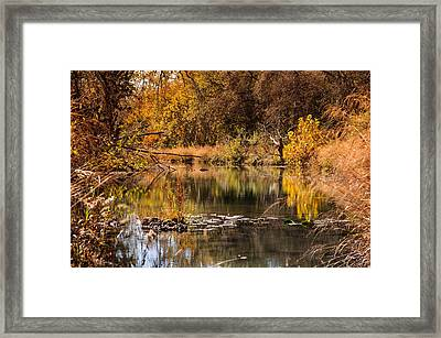 Framed Print featuring the photograph Autumn Day by John Johnson