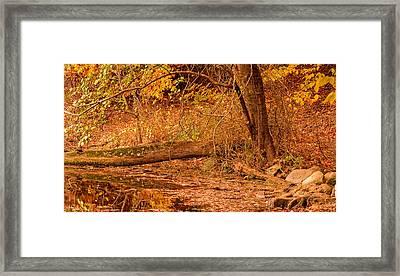 Autumn Day Framed Print by Lourry Legarde