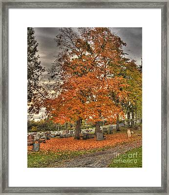Framed Print featuring the photograph Autumn Delight by Jim Lepard
