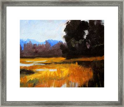 Autumn Delta Framed Print by Nancy Merkle
