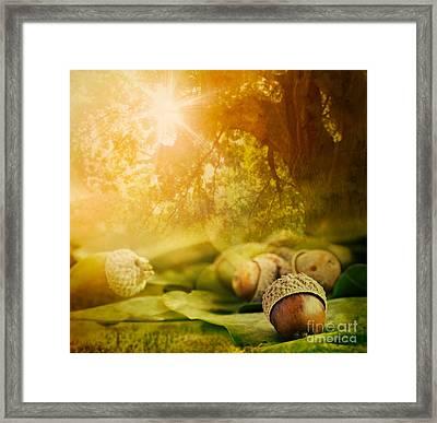 Autumn Design Framed Print by Mythja  Photography