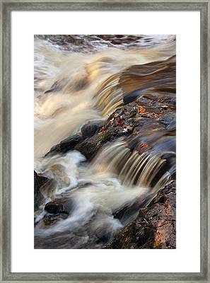 Autumn Details Framed Print