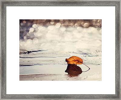 Autumn Framed Print by Diana Kraleva
