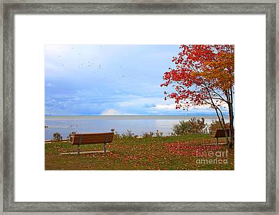 Autumn Framed Print by Dipali S