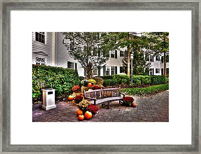 Autumn Display At The Sagamore Resort Framed Print by David Patterson