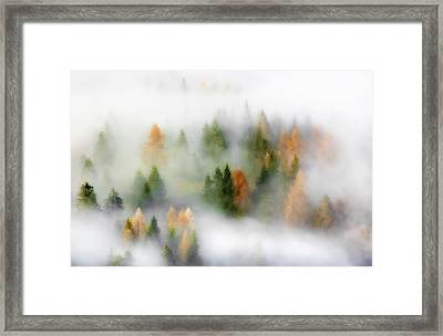 Autumn Dream Framed Print by Kristjan Rems