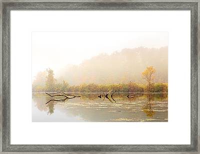 Autumn Dream Framed Print by Sara Hudock