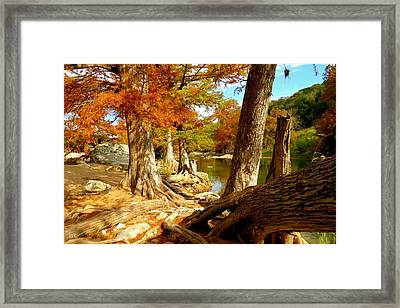 Framed Print featuring the photograph Autumn Dreams by David  Norman