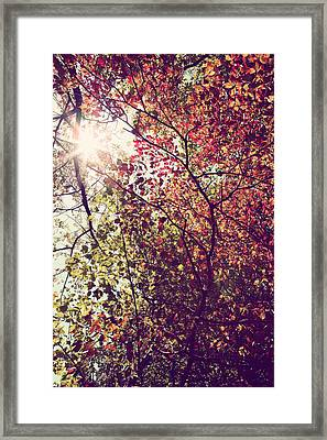 Autumn Dresses In Flame And Gold Framed Print by Kim Fearheiley