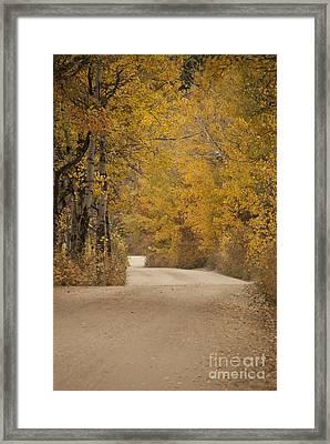 Autumn Drive Framed Print by Juli Scalzi
