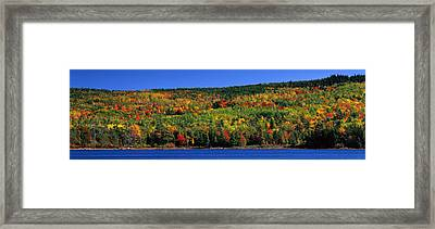 Autumn Eagle Lake, Acadia National Framed Print by Panoramic Images