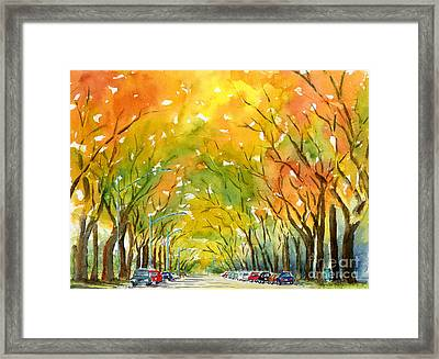Autumn Elms Framed Print